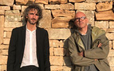 Puglia. Il muretto a secco è ricostruito con il legno degli ulivi colpiti da Xylella